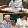 Joint Congressional Oversight Committee on Automated Election System