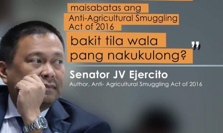 Senator JV on Anti-Smuggling