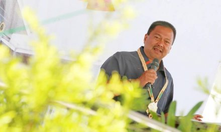 Sen. JV Ejercito bats for 'specialty hospital' in every region
