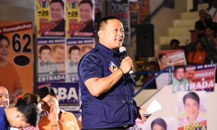 Sen. Ejercito suggests tripartite meeting on 'doble plaka' law